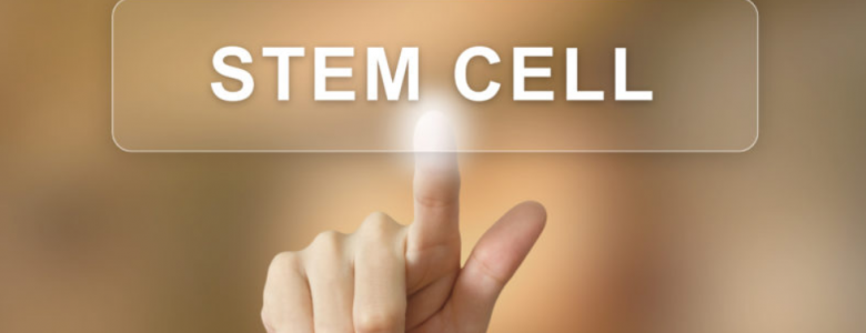latest update from our clients  stem cell therapy in Bradenton